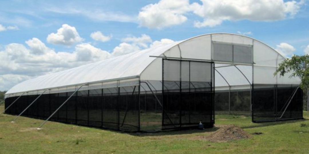 A green house on a farm in the Darling Downs